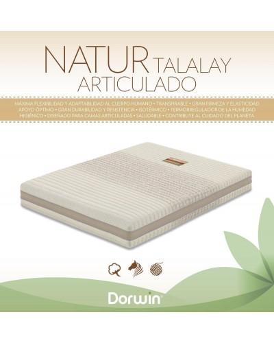 Colchón FLEX Latex Natur Talalay Articulado